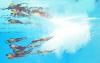 싱크로나이즈드 대회 `물 속에서 명연기`