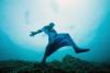 모나코 프리다이빙, `한 걸음씩`