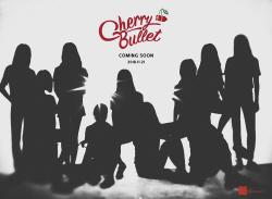 FNC, AOA 여동생 그룹 론칭…10인조 체리블렛