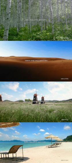핑클 재결합 예능 '캠핑클럽', 7월 편성