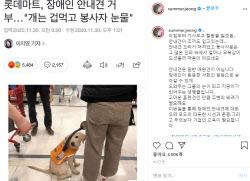 롯데마트, 안내견 출입거부…스타들도 '분노' 폭발