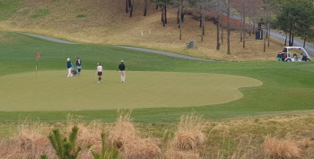국내 골프시장 약 12조9933억원..최근 2년 동안 2.45%씩 성장